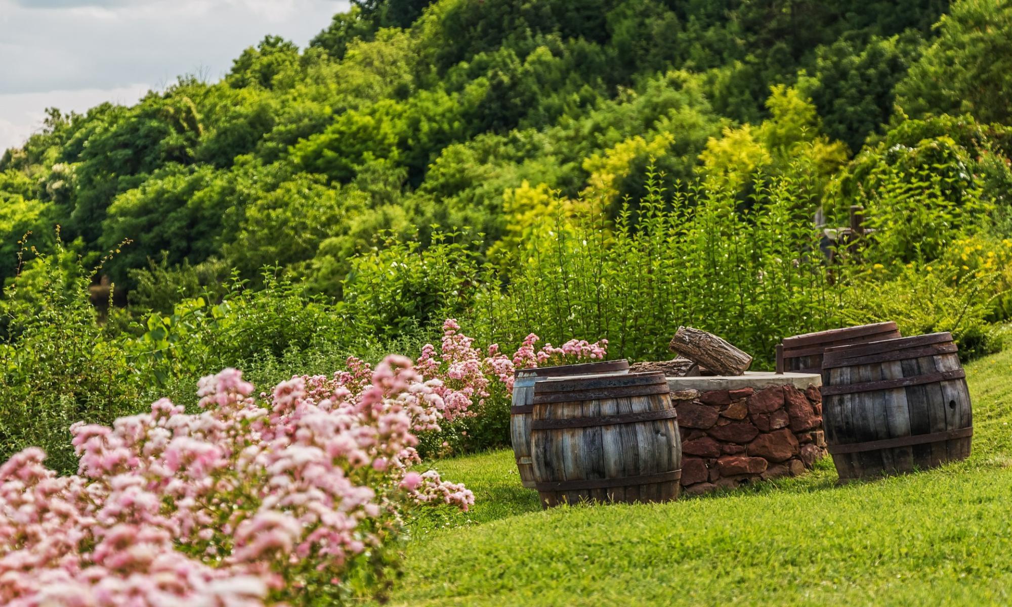 Milde Garten- & Landschaftsbau